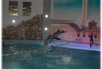 Дельфінарій у Трускавці
