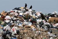 сміттєві війни