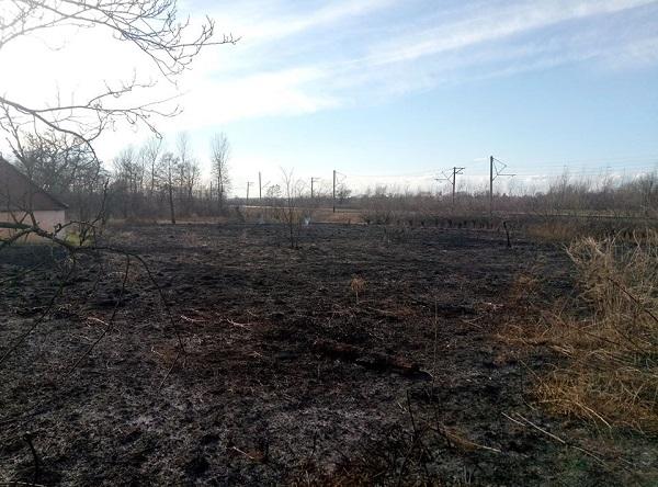 На Львівщині палій сухостою спалив сарай сусіда