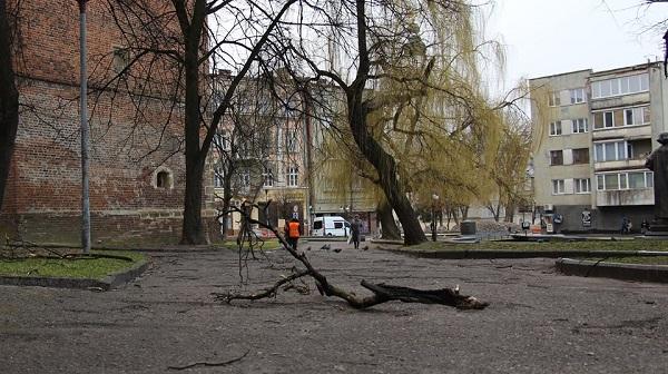 стихія на Дрогобиччині