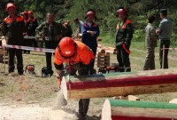 змагання лісорубів