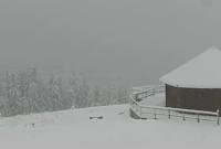 сніг в Карпатах