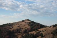У горах на Львівщині заблукало подружжя з Дрогобича