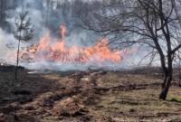 Пожежа знищила 5% Чорнобильського заповідника