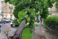 Буревій у Львові