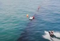 спасіння дельфінів
