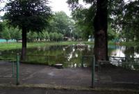 В озері у міському парку Дрогобича виявили потопельника